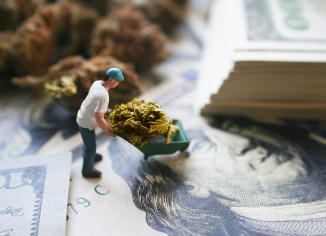 Weekly Market Roundup + Top Performer: Cannabis, Trade Deals, and A Brand-New Sector